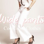 wide-pants