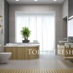 toilet-freshener
