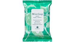 houseofrose-mintleap-body-cool-seat