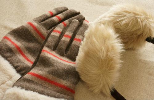 gloves_brand