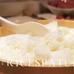 rice-spatula
